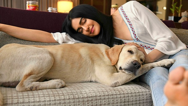 I am very excited to be paired opposite Happy the dog: Adah Sharma